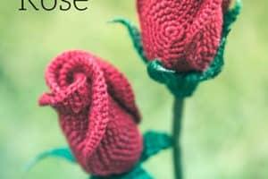 Increibles modelos de rosas tejidas a crochet patrones