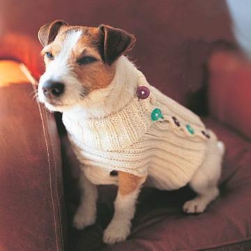 como hacer ropita para perros crochet
