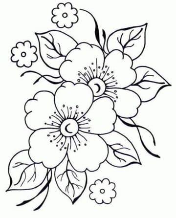 dibujos de flores para bordar en cadeneta