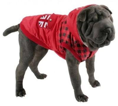 como hacer ropa para perros grandes estilo casual