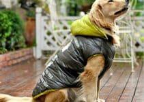 Ideas novedosas sobre como hacer ropa para perros grandes