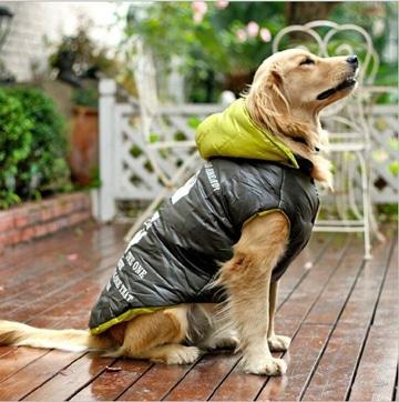 como hacer ropa para perros grandes para lluvia