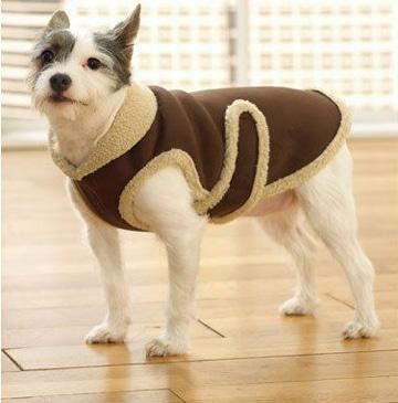 como hacer ropa para perros grandes y bonitos