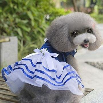 como hacer vestidos para perros pequeños