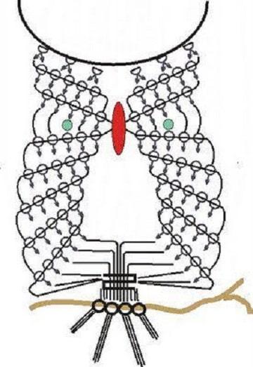 buhos en crochet patrones diseños