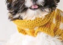 Confort y estilo con estoschalecos tejidos para perros