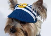Diseños curiosos de gorros tejidos para perros a crochet