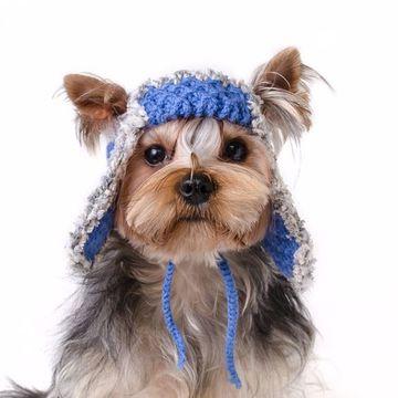 gorros tejidos para perros de lana
