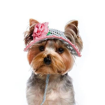 gorros tejidos para perros en crochet