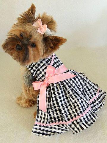 imagenes de ropa para perros hembras