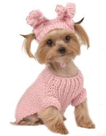 imagenes de ropa para perros tejidos