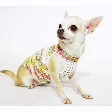 vestidos para perritas chihuahua tejidos