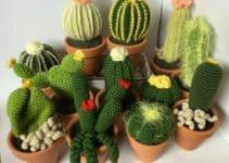 Pasos de como hacer cactus a crochet y otras plantas