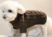 Patrones para saber como hacer un abrigo para perro