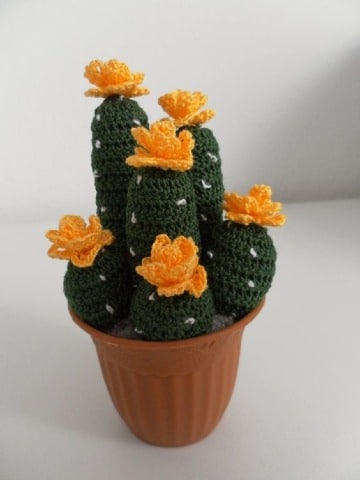 imagenes de como hacer cactus de ganchillo