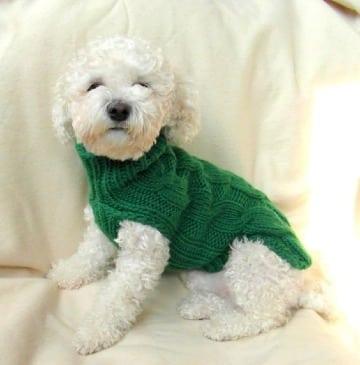 imagenes de como hacer un abrigo para perro
