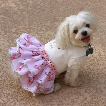 patrones de vestidos para perritas pincher