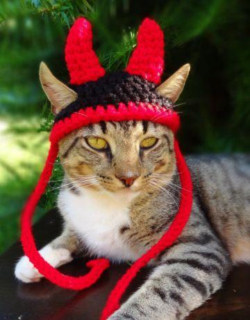 gorros para gatos a crochet disfraces