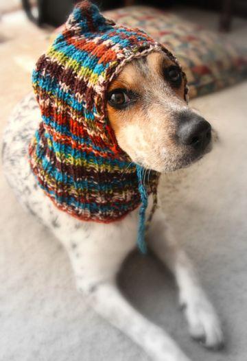 gorros para gatos a crochet y para perros