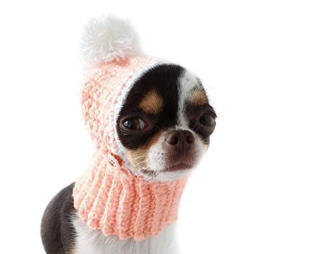 gorros tejidos para perritos con pompones